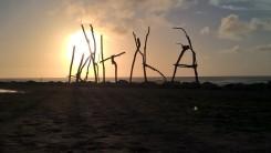 Hokitika driftwood sign